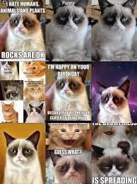 app per grumpy cat meme latest fun ny fat and happy cats photo s catalogs