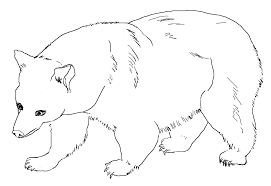 Find all the coloring pages you want organized by topic and lots of other kids crafts and kids activities at allkidsnetwork.com. Free Printable Bear Coloring Pages For Kids