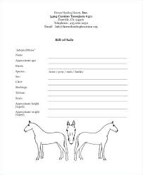 Equine Bill Of Sales Private Party Car Sale Receipt Template Animal Bill Of Contract