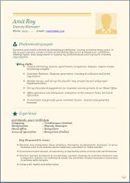 Experience Resume Format Doc 14 Joele Barb