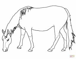 Printable Coloring Pages horse coloring pages to print for free : Grazing American Quarter Horse Coloring Page | Free Printable ...