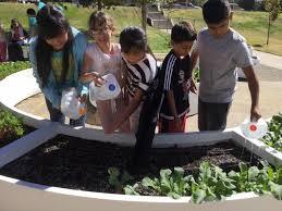 edgewater learning garden