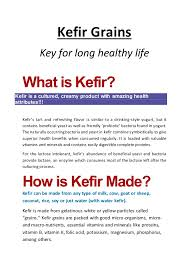 kefir grains. kefir grains key for long healthy life what is kefir? a cultured,