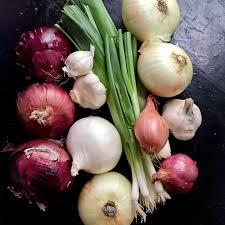 Resultado de imagen para onions