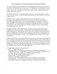 description essay format nitasweb examples essay writing