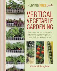Small Picture Plain Diy Vegetable Garden Ideas Mhnnmofd To Inspiration