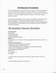 Example Of A Profile For A Resumes Resume Profile Samples 30 What Do A Resume Look Like Resume