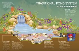 Small Picture Backyard Ponds Ideas Backyard Landscape Design