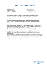 Executive Sumary Executive Level Resume Samples And Examples At Resumestime