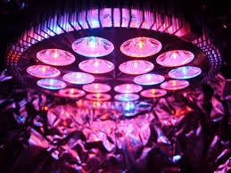Led Pflanzenlampe 54 W ...