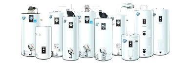 rheem tankless water heater home depot short gas e19