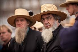 uncategorized you re beardyful amish community holds its annual mud