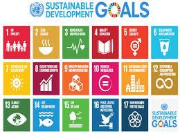 Resultado de imagem para sustainable goals