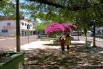 imagem de Realeza Paraná n-8