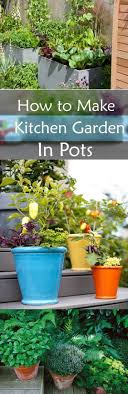 Organic Kitchen Garden How To Make Kitchen Garden In Pots Container Kitchen Garden