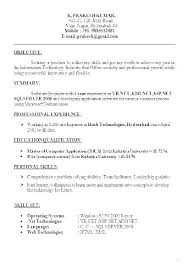 Effective Resume Formats Resume Format For It Professionals ...