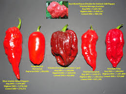 Scorpion Pepper Scoville Chart Watch Out For The Trinidad Moruga Scorpion Hottest Pepper