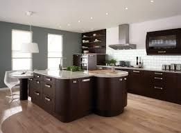 Small Picture Kitchen Colors for Oak Cabinets Color Black Ideas Kitchen Colors