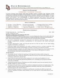 Summary Examples For Resumes Example Of Resume Summary Lovely Resume Executive Summary Examples 19