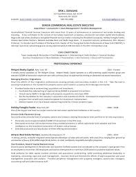 Us Resume Template Enchanting What Goldman Sachs Looks For In R Sum S Business Insider 48 Resume
