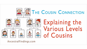 Blank Cousin Chart The Cousin Connection Explaining The Various Levels Of