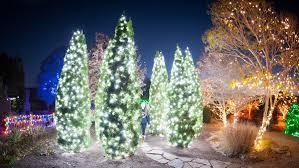 Must See Holiday Light Shows Across North Carolina