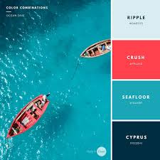 Coral Color Combinations Build Your Brand 20 Unique And Memorable Color Palettes To