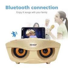 Loa Bluetooth Karaoke hình mắt cú SD-306 kèm 2 mic Karaoke không dây