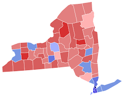 2018 New York Gubernatorial Election Wikipedia