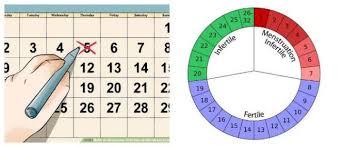 Explanation Menstrual Cycle Calendar Hoool Health Wellness