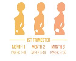 first trimester safe sleep academy
