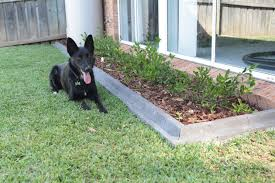 lawn edge pavers garden edging pavers