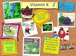 why is vitamin k important