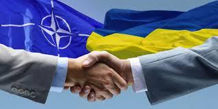 Украина ждет подтверждения перспективы членства в НАТО на июльском саммите, - глава Управления Кабмина по вопросам сотрудничества с Альянсом Генчев - Цензор.НЕТ 77