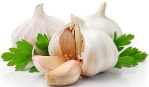 Resultado de imagen para garlic
