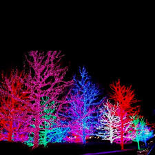 outdoor christmas lighting. beautiful christmas lights outdoor lighting