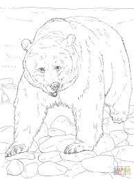 Small Picture Realistic Grizzly Bear coloring page Free Printable Coloring Pages