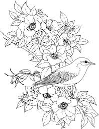 c3ed9ad3f628ac723acd47bf0d08a184 flower coloring page digital images and printables pinterest on creative coloring birds