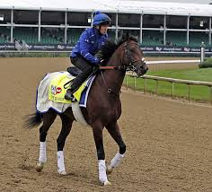 Foreign Born Horses Are Mystery At Kentucky Derby