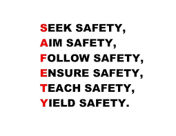 Safety Quotes Gorgeous Safety Quote Quote Number 48 Picture Quotes