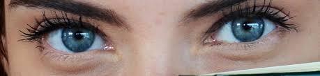 Pics Of Eyes 101 Amazing Eye Facts Lenstore Co Uk