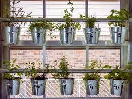 window mounted hanging herb garden