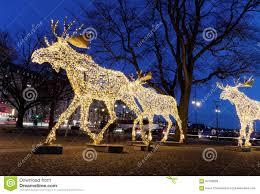 Moose Christmas Lights Christmas Moose Floc Made Of Led Light Stock Image Image