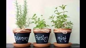 apartment herb garden. Apartment Herb Garden How To Make An From A Pallet E