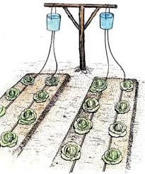 Small Picture Best 25 Irrigation system design ideas on Pinterest Garden