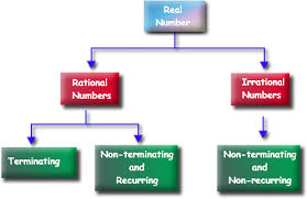 Rational And Irrational Chart 8 Ns 1 Rational And Irrational Numbers Mr Hills Math