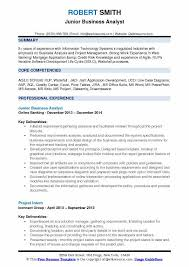 Business Analyst Modern Resume Template Banking Business Analyst Resume Magdalene Project Org