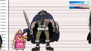 One Piece Anime Size Chart One Piece Character Sizes