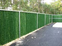 Evergreen Hedge Insert for Chain Link Fence Considering a green