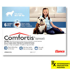 40160 lb dogs blue 6 count comfortis for dogs s42